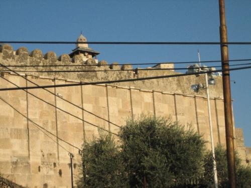 hebron 10253?w500&amph375 - الحرم الإبراهيمي.. شاهد على لصوص الصهاينة (صور)