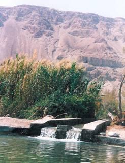 اريحا....مدينه القمر...معا لنتعرف على مدن فلسطين  Image002
