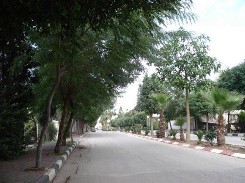 Qalqiliya-29136