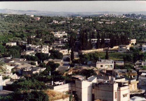 طولكرم ... جبل الكرم .... معا لنتعرف على مدن فلسطين  Tukarem