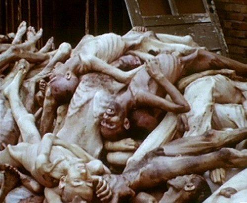 Holocaust123
